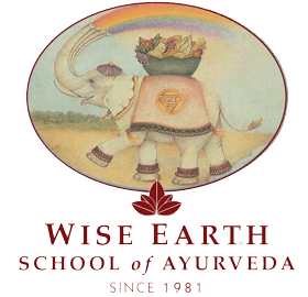 Wise Earth